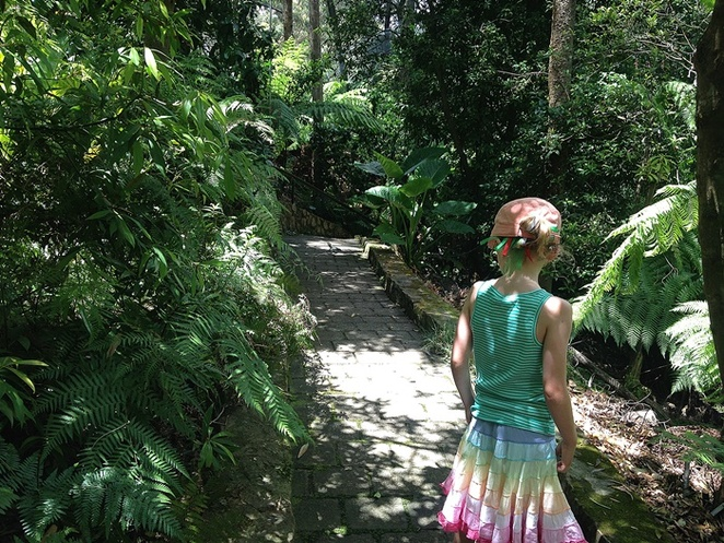 rainforest gully, australian national botanical gardens, canberra, escape the heat, stay coold, ACT, gardens, cool, kids, families