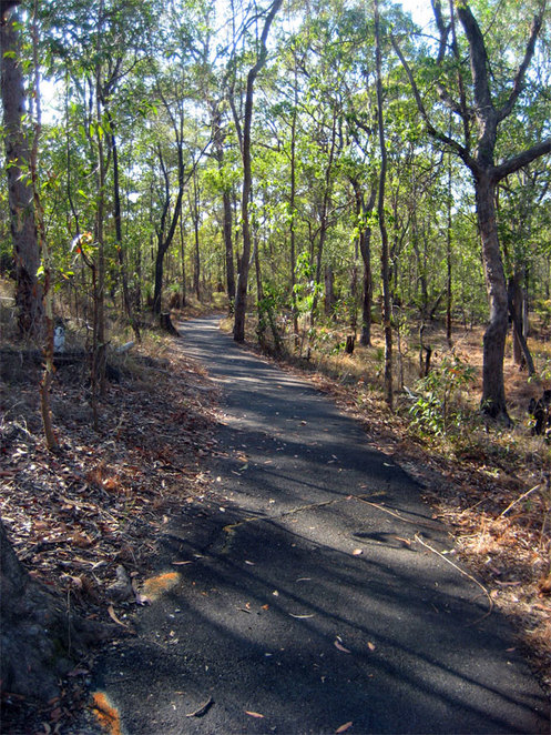 The tracks through Raven Street Reserve are bitumen and highly accessible