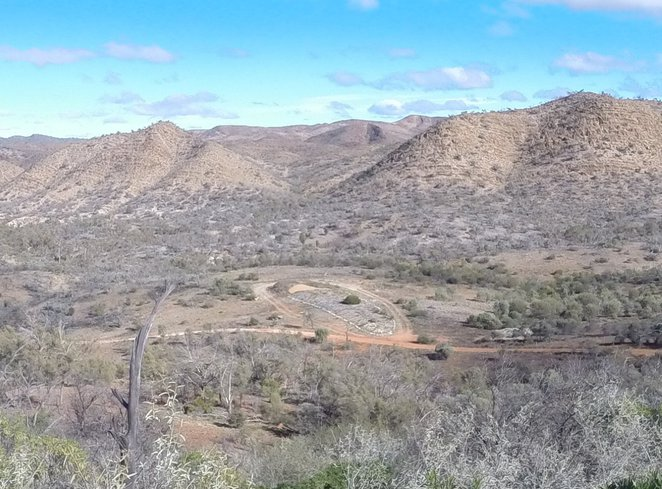 Spriggina, Arkaroola