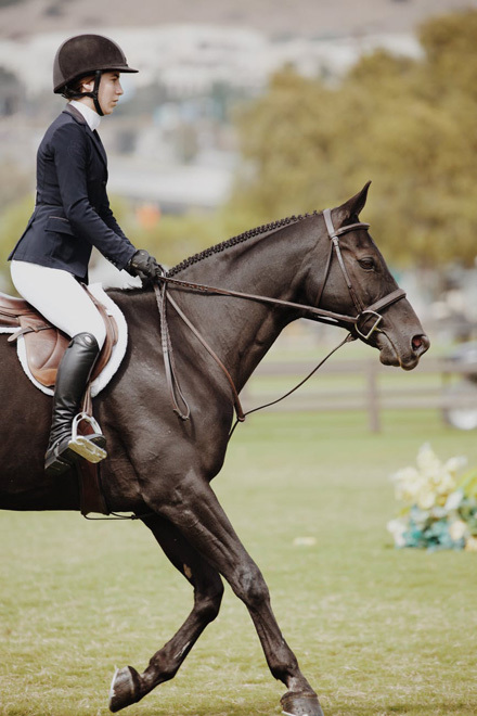 Victoria Melbourne Werribee Mansion Horse Horses Horsemanship Cross Country Show Jumping Dressage Long Weekend Escape The City Get Out Of Town