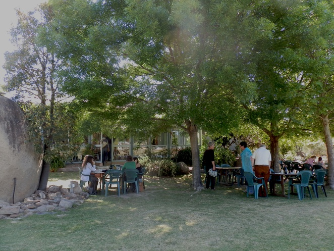 wine tasting, hidden creek, wine, food, garden, outdoor