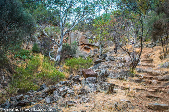 Adelaide, walk, bush walk, hike, South Australia