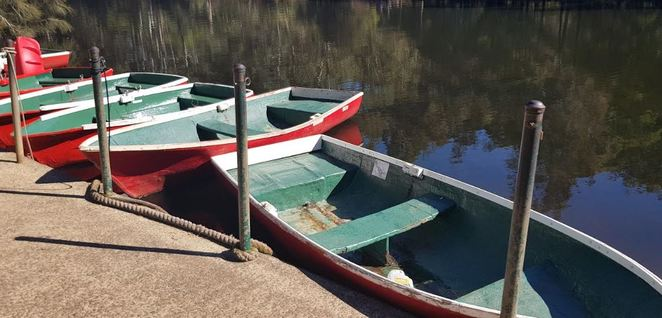 boat hire, lane cove boatshed, river, fun, row boat