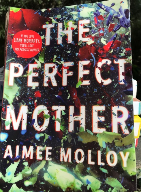 books, authors, recommended reads, the perfect mother, aimee molloy, spring, relax