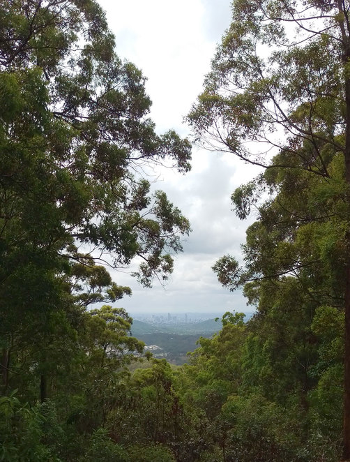 Views of Brisbane City from Camp Mountain Lookout