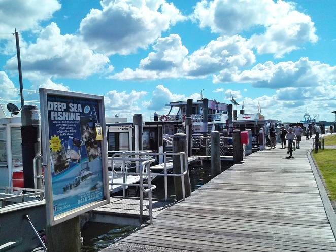 cruise terminal, cruise boats, whale watching, dolphin watching, boat terminal, cruises, boats, jet ski, jet boat, summer, things to do, tourist attractions, NSW, port macquarie, kids, children, families, school holiday activities, seniors,