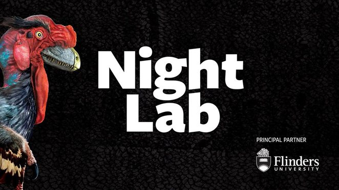dinosaur revolution, museum membership, night lab, south Australian museum, palaeontological, beers and bones talk, dinosaur terrarium