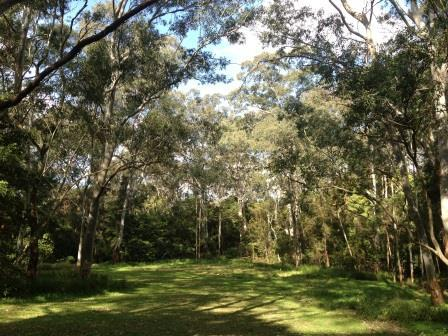 Edna Hunt Sanctuary, Epping Park, Epping Picnic