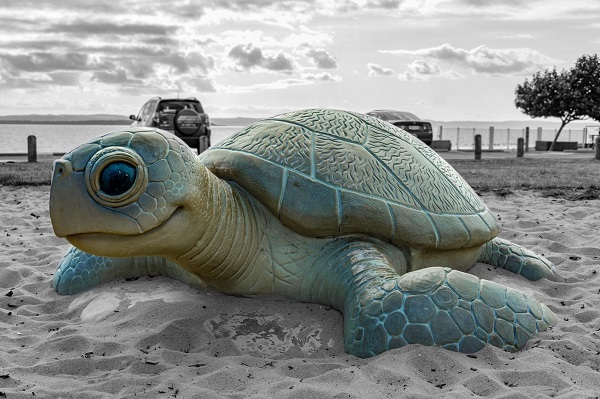 embrace the bay, Raby Bay, May Cross, Cleveland, Moreton Bay, sand, turtle, sculpture, park