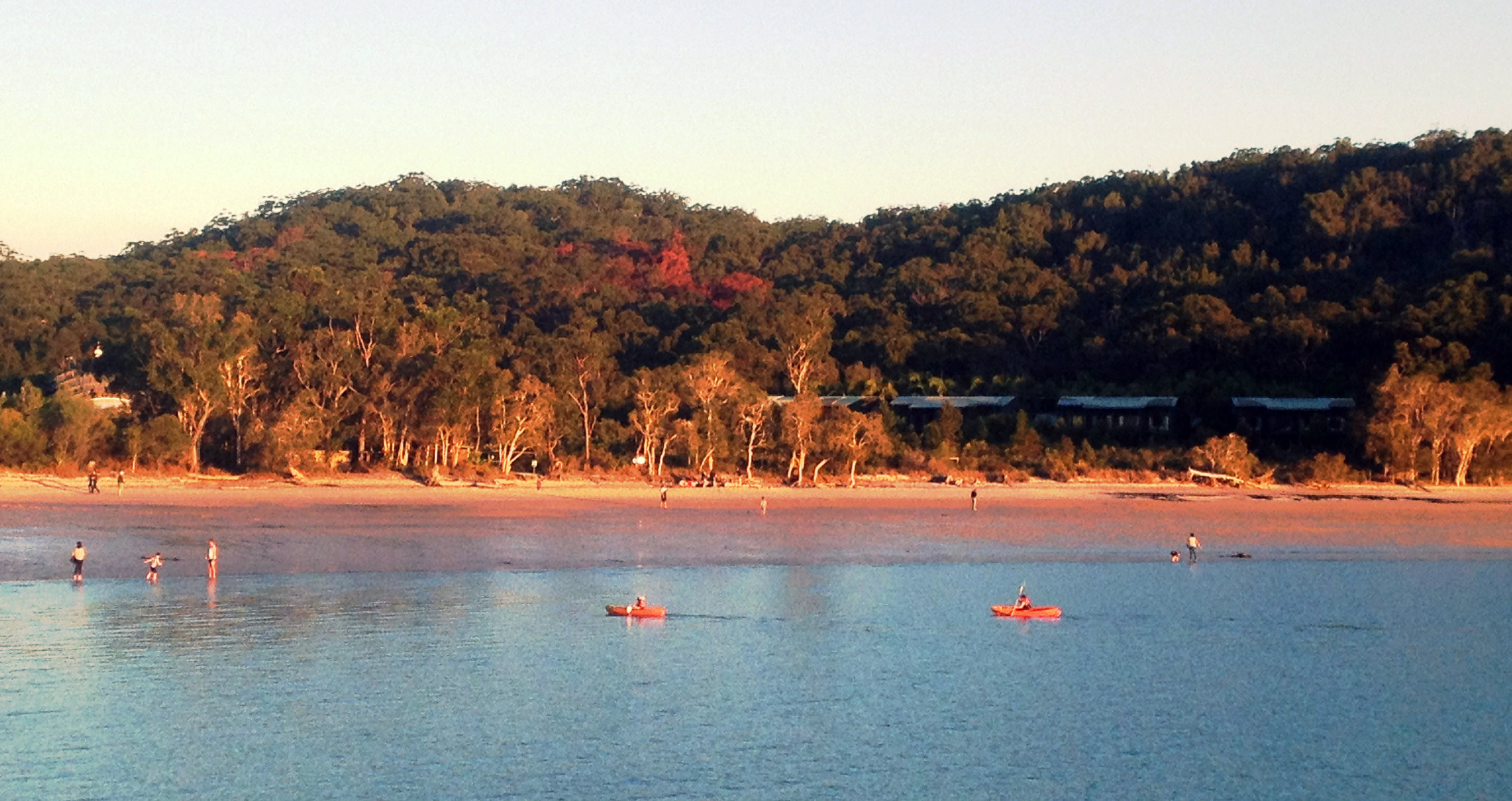 Visitors Impact On Fraser Island