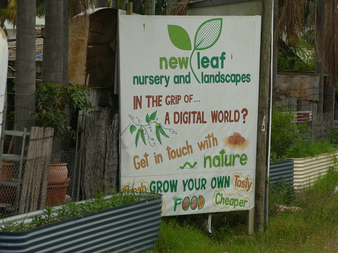 New Leaf Nursery Ingleside