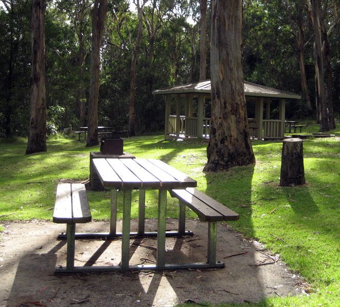 Queen Mary Falls picnic and barbecue area opposite the Queen Mary Falls Caravan and Tourist Park