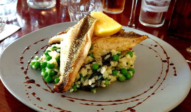 Risotto, fish, lunch, special, hotel, Newcastle, pub, family