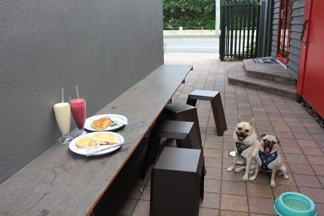 rose and edward espresso, cafe, dog friendly, restaurant, breakfast, lunch, brunch, coffee, windsor, northside, northern suburbs, brisbane, dog friendly, kids area, espresso bar