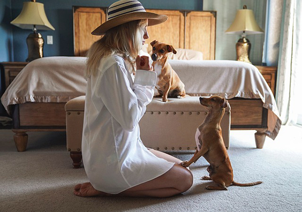 self-isolation with your pet, self-isolation with your dog, what to do in self-isolation