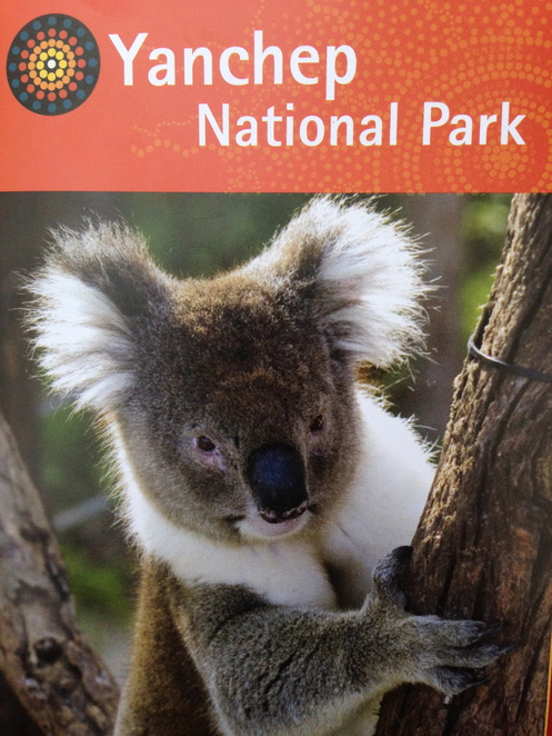yanchep national park family day out perth. Black Bedroom Furniture Sets. Home Design Ideas