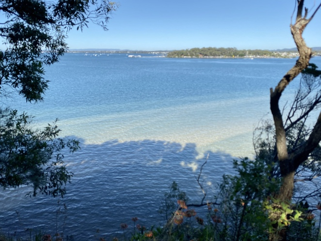 This section of track provides stunning views across Moreton Bay