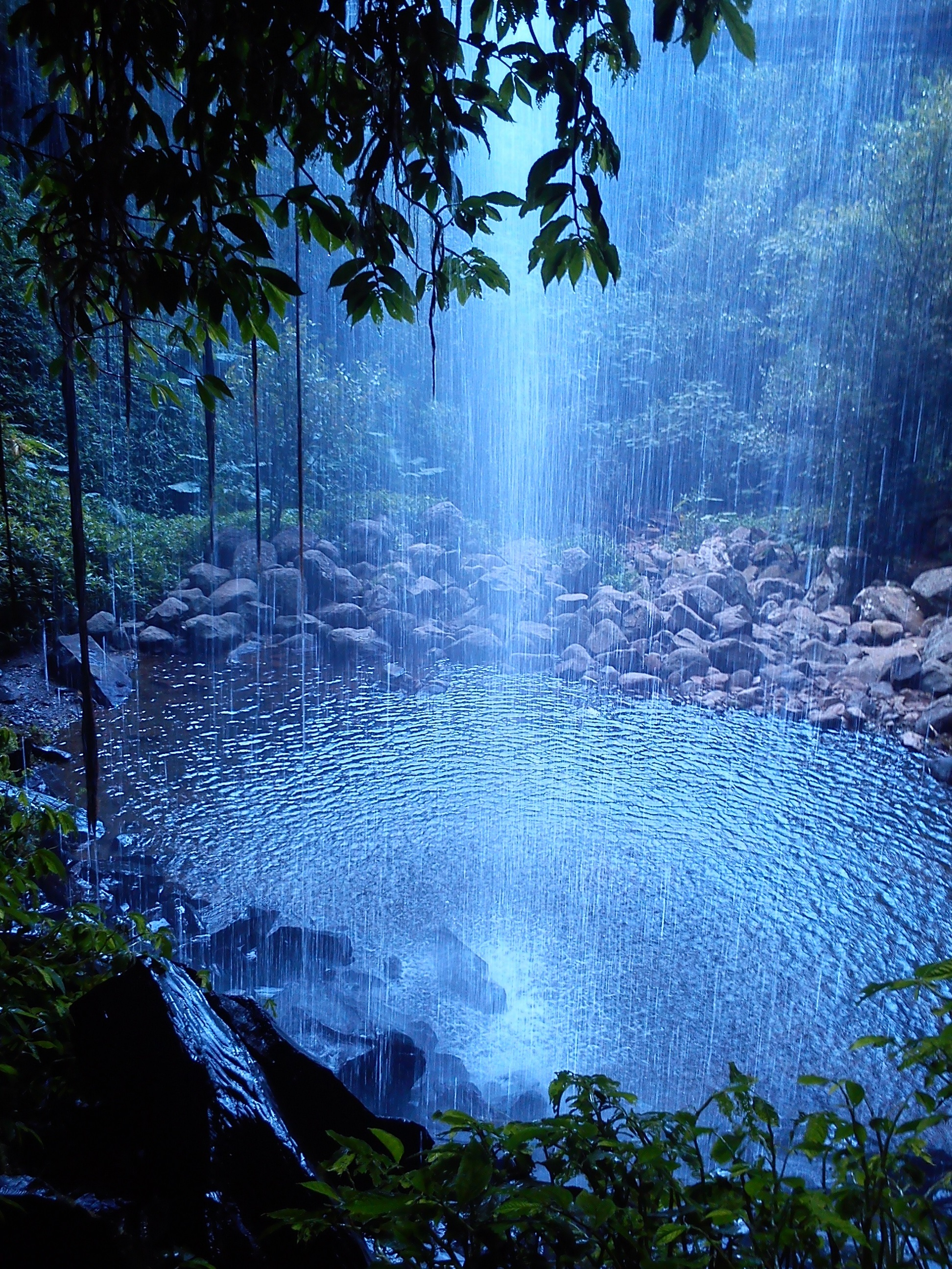 Crystal Shower Falls Coffs Harbour
