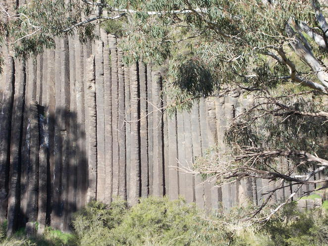 organ pipes national park keilor melbourne trees