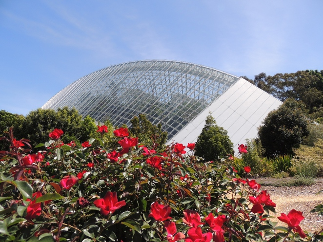 parklands, developers, jay weatherill, competition, adelaide, bicentennial conservatory