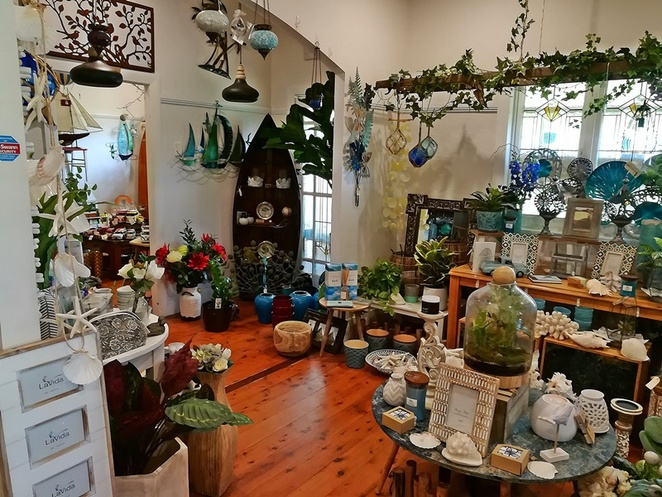 plant trade nursery, plants, gifts, trees, palms, ferns, NSW, port stephens, landscaping, nelson bay, where to buy plants, where to buy trees, nelson bay road