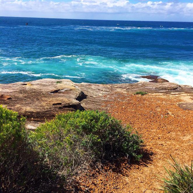 port hacking, point, bundeena, walk, coast, royal national park
