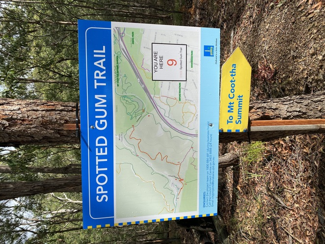 Spotted Gum Trail