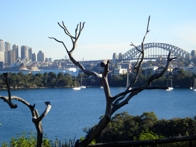 Sydney Harbour from Taronga Zoo