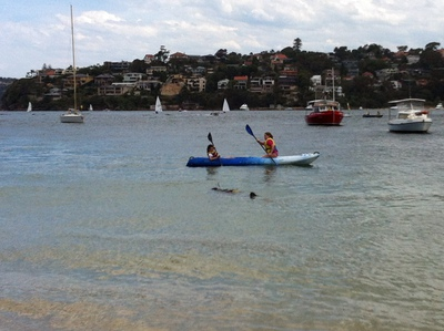 Sydney's Best Water Adventures