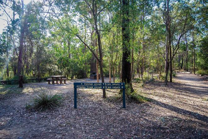 venman Bushland National Park, bush walks, nature, walking, day trip, picnic area, Brisbane, South East Queensland