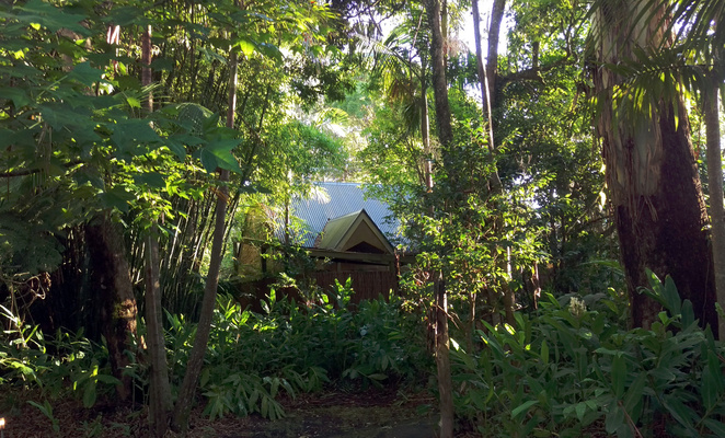 Witches Falls Cottages are secluded in a rainforest garden