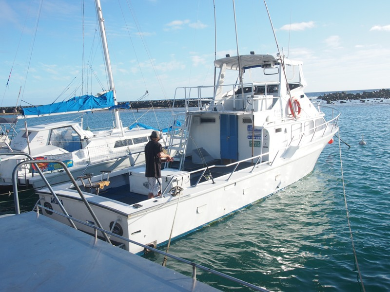 Cook islands akura fishing charters auckland for Fishing charters auckland