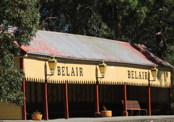 belair national park, national park, fun things to do, fun for kids, belair maze, belair railway station, hawthorn, belair