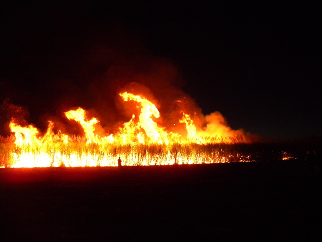 The flames created amazing shapes