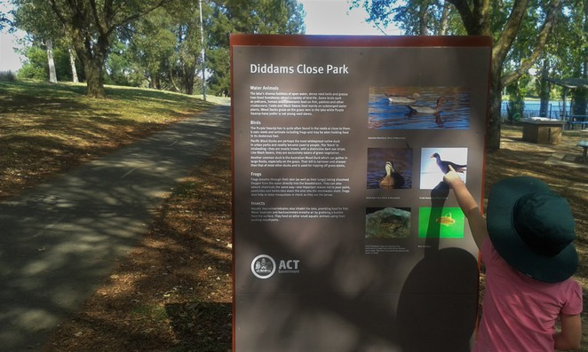 diddams close park, belconnen, lake ginninderra circuit, walks, bike rides, pram walks, ACT,