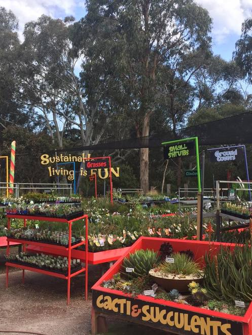 edible forest gardens, food forest, sustainable living, manningham