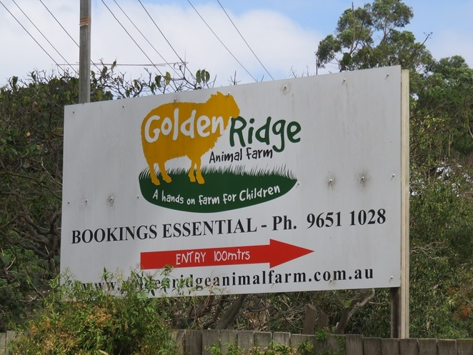 Golden Ridge Animal Farm, Dural, NSW