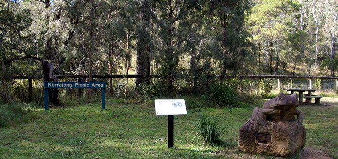 Kurrajong Picnic Area in the Goomburra Section of the Main Range National Park