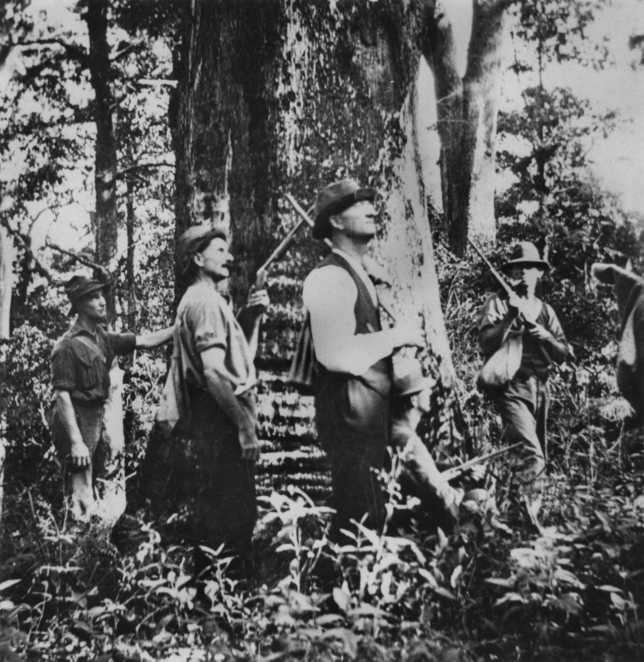 Hunting Party 1920. State Library Qld