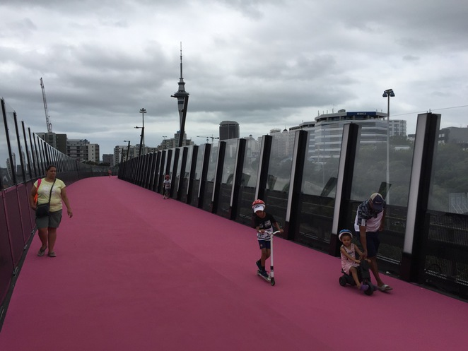 lightpath nelson st cycleway free pink family kids children bikes scooters