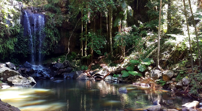 Mt Tamborine is a beautiful place for a camping get away
