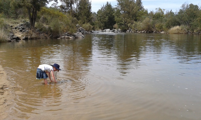 Pine Island reserve Playground, BBQ's, parks, swimming, playgrounds, summer, canberra, tuggeranong, greenway