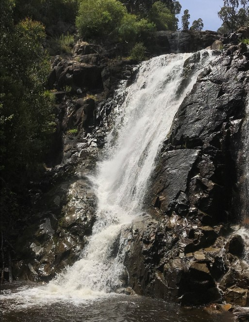 steavenson falls, marysville, waterfall, walking track, hike, free, family, fun, nature, great keppel lookout, day trip