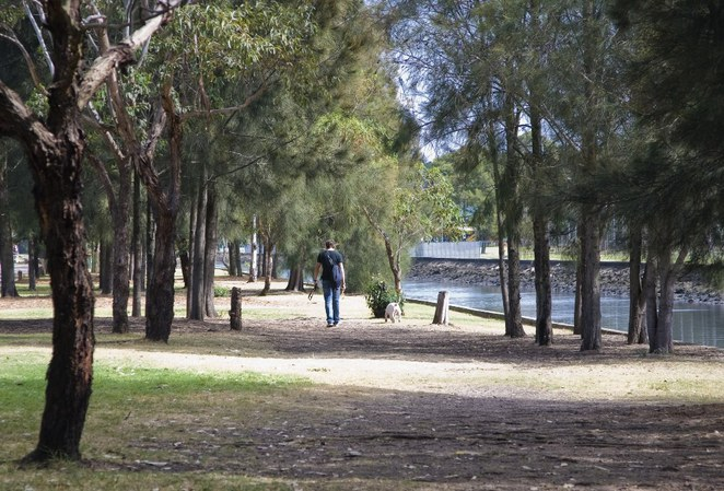 Sydney's Best Spots for Dogs, Cafe Bones, Hawthorne Canal Reserve