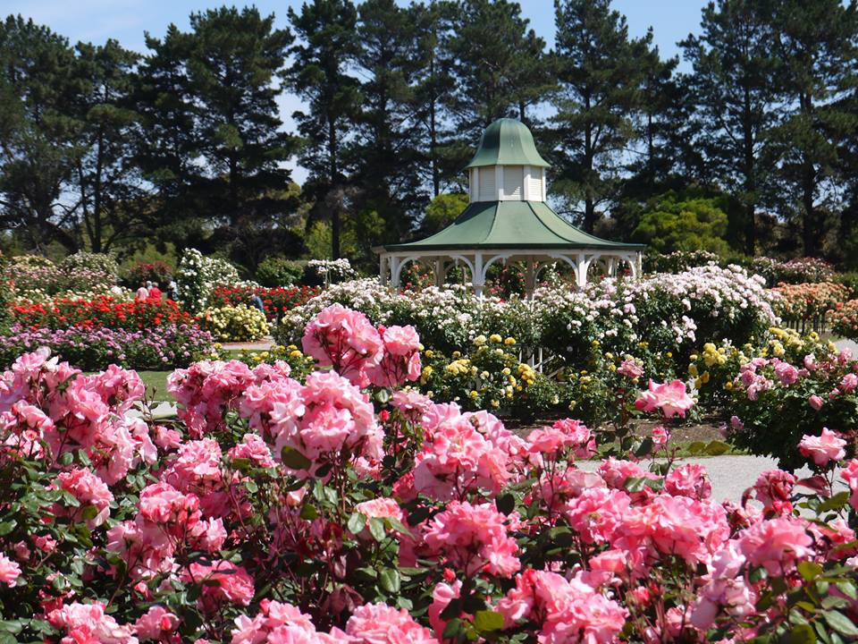 10 Top Gardens In Greater Melbourne Melbourne