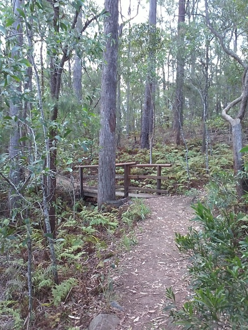 wooden bridge, board walk, bush walk, kayaking, swimming, water hole, native plants, picnic spot
