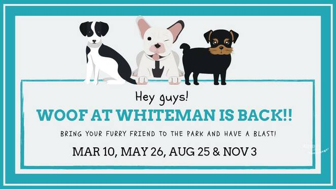 Woof,at,Whiteman