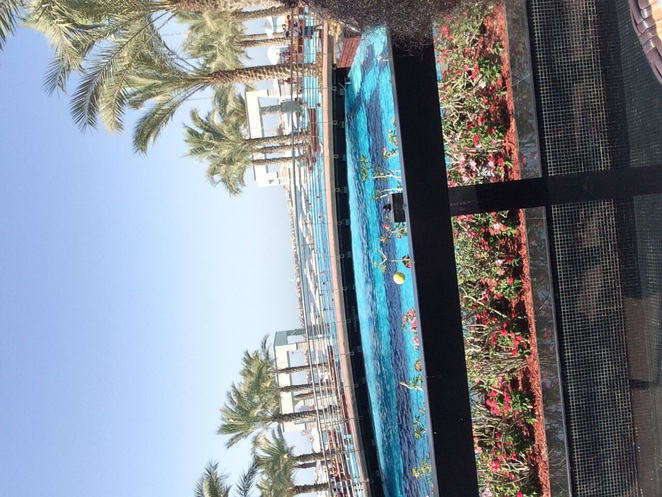 Zabeel Saray, Jumeirah, hotel, the palm
