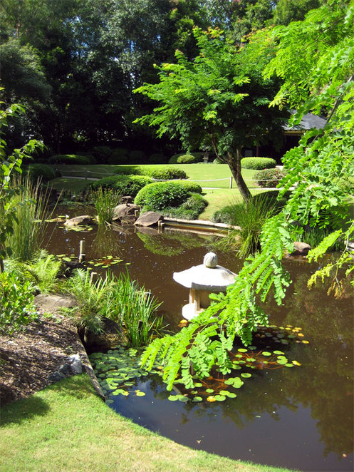 Japanese Garden at Brisbane Botanic Gardens