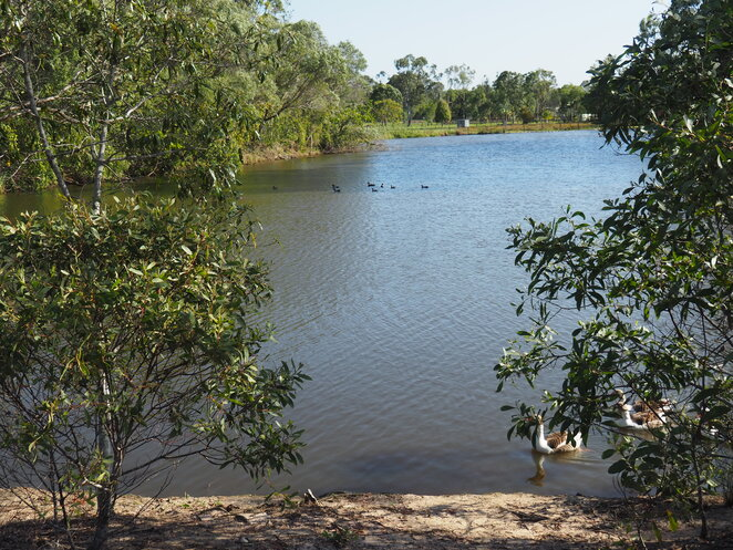 Krause Park, East Burpengary, bird sanctuary